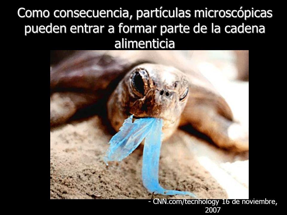 Como consecuencia, partículas microscópicas pueden entrar a formar parte de la cadena alimenticia - CNN.com/tecnhology 16 de noviembre, 2007