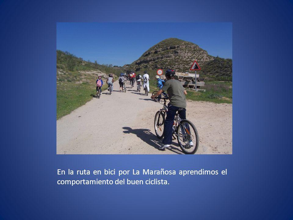 En la ruta en bici por La Marañosa aprendimos el comportamiento del buen ciclista.