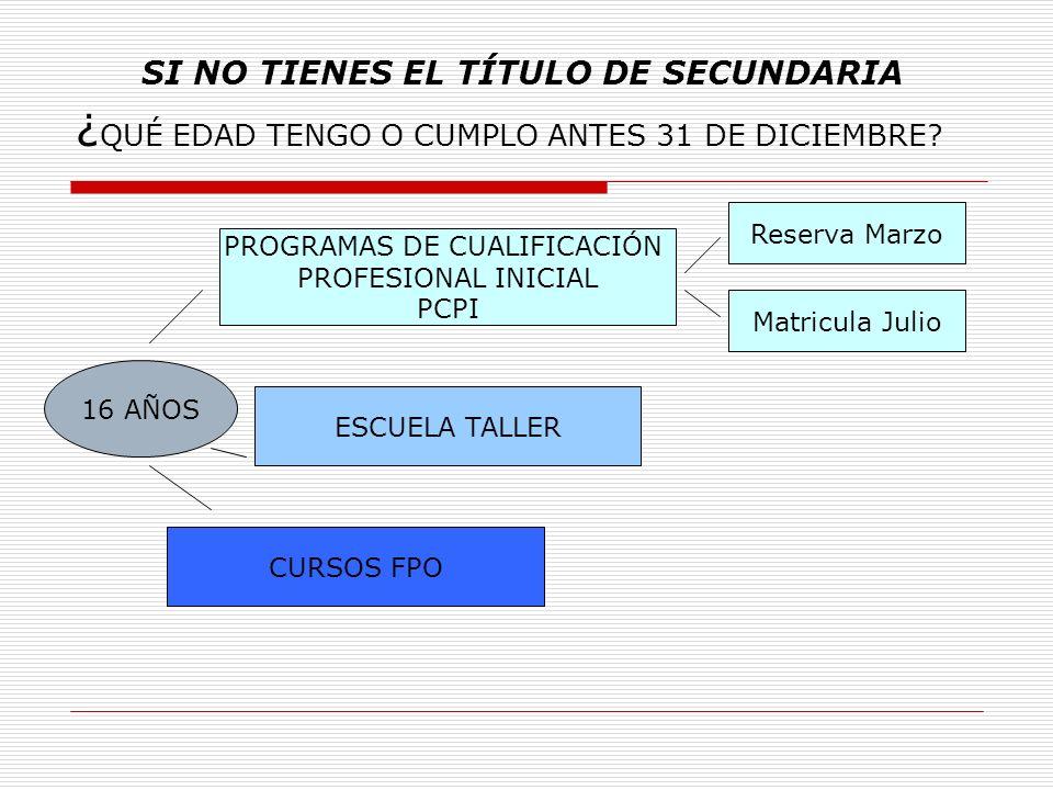 PROGRAMAS DE CUALIFICACIÓN PROFESIONAL INICIAL ¿Qué son.