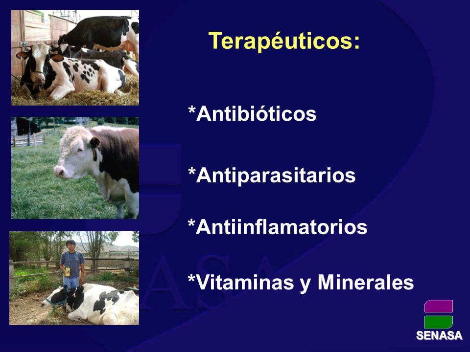 Preventivos: *Vacunas *Vitamínicos y Minerales SENASA *Antibióticos
