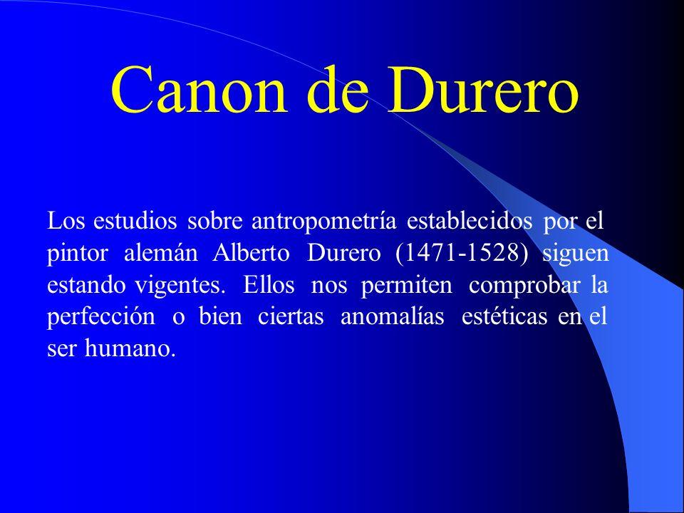 Canon de Durero Los estudios sobre antropometría establecidos por el pintor alemán Alberto Durero (1471-1528) siguen estando vigentes. Ellos nos permi