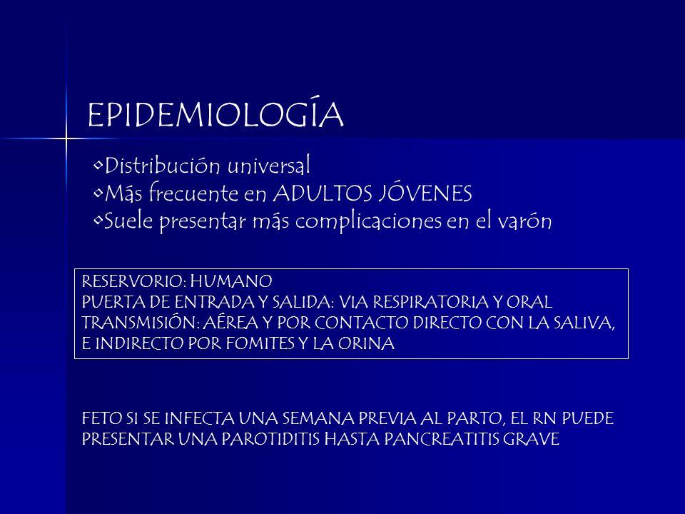 EPIDEMIOLOGÍA RESERVORIO: HUMANO PUERTA DE ENTRADA Y SALIDA: VIA RESPIRATORIA Y ORAL TRANSMISIÓN: AÉREA Y POR CONTACTO DIRECTO CON LA SALIVA, E INDIRE