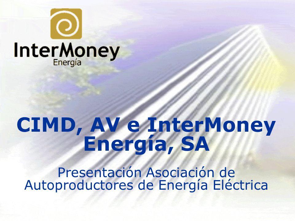 CIMD, AV e InterMoney Energía, SA Presentación Asociación de Autoproductores de Energía Eléctrica