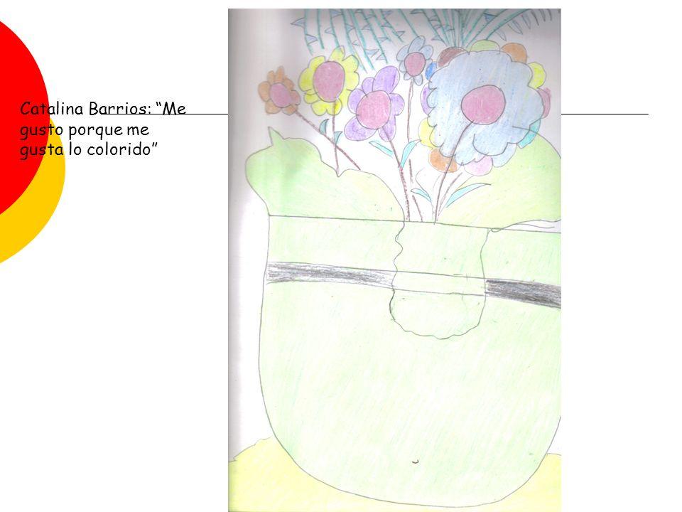 Catalina Barrios: Me gusto porque me gusta lo colorido