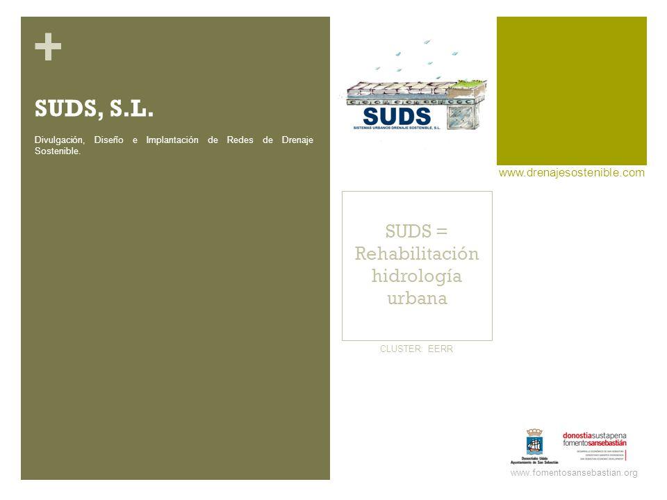 + SUDS = Rehabilitación hidrología urbana www.drenajesostenible.com www.fomentosansebastian.org CLUSTER: EERR Divulgación, Diseño e Implantación de Redes de Drenaje Sostenible.