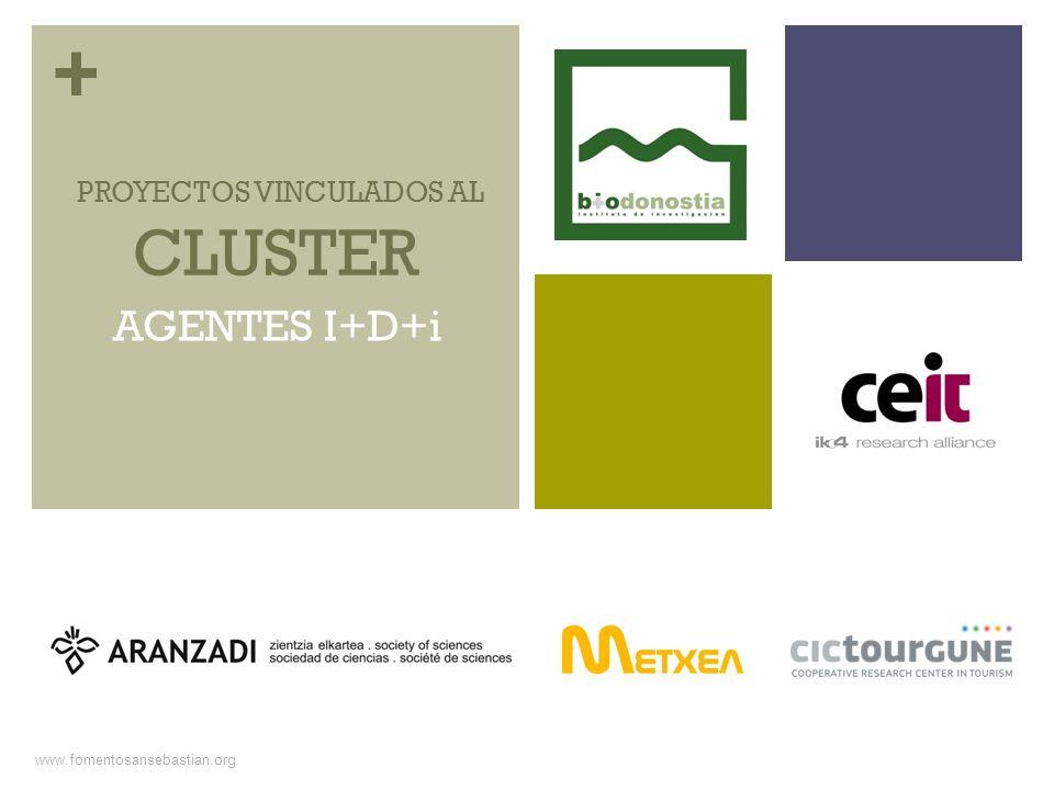 + www.fomentosansebastian.org CLUSTER PROYECTOS VINCULADOS AL AGENTES I+D+i