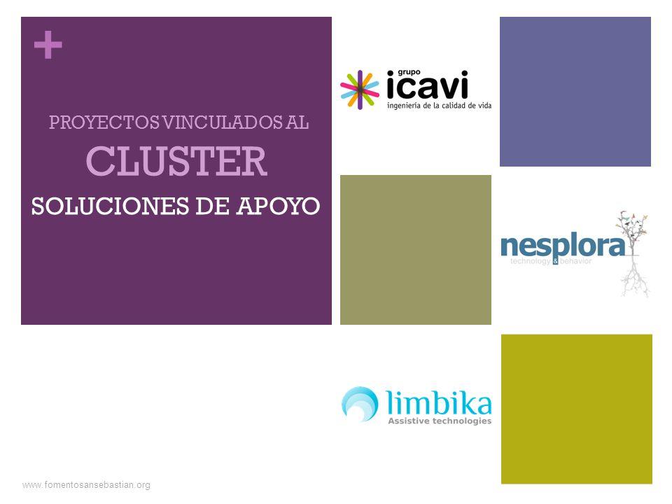 + SOLUCIONES DE APOYO CLUSTER PROYECTOS VINCULADOS AL www.fomentosansebastian.org
