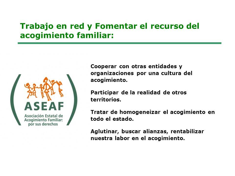Cuales son nuestros proyectos ahora (1) Programas y Servicios: Fomento del Acogimiento Familiar (Desde 1994) Orientación y preparación de todas las personas que deseen acoger Programa de fomento del recurso de familias educadoras (campañas) Cooperación estatal para el acogimiento familiar (ASEAF).
