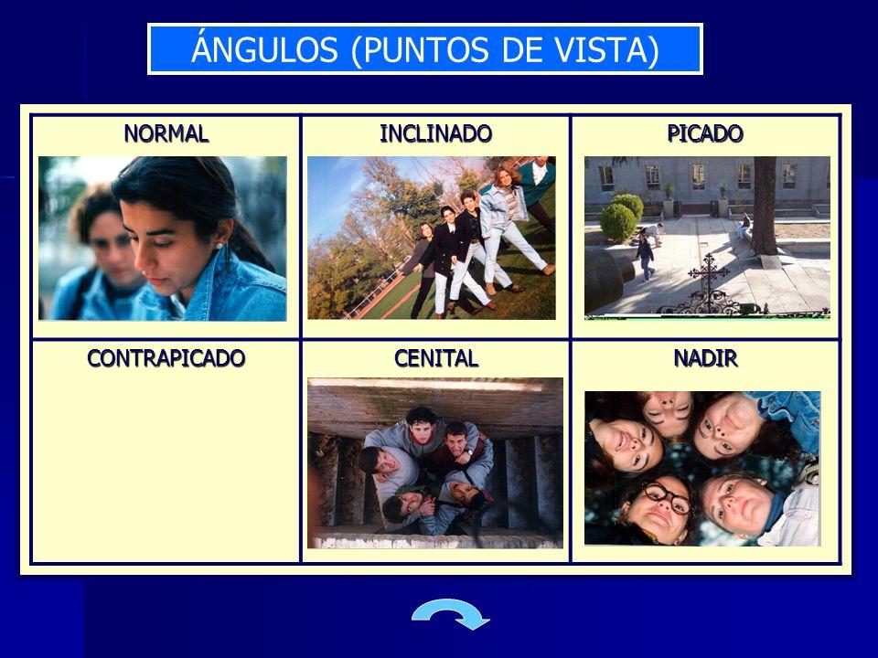 ÁNGULOS (PUNTOS DE VISTA) NORMALINCLINADOPICADO CONTRAPICADOCENITALNADIR