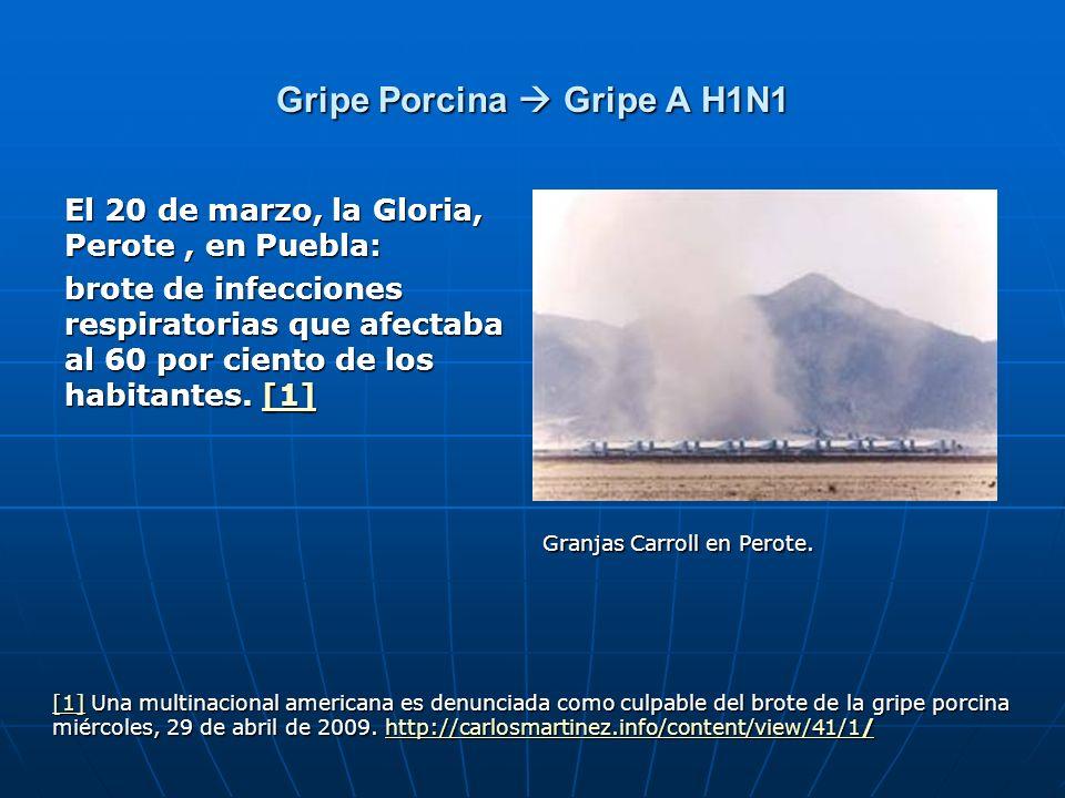 Gripe Porcina Gripe A H1N1 El 20 de marzo, la Gloria, Perote, en Puebla: brote de infecciones respiratorias que afectaba al 60 por ciento de los habit