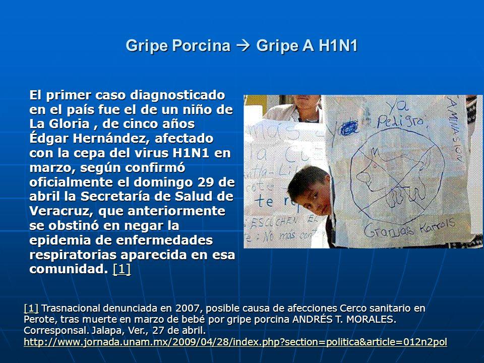 Gripe Porcina Gripe A H1N1 El primer caso diagnosticado en el país fue el de un niño de La Gloria, de cinco años Édgar Hernández, afectado con la cepa