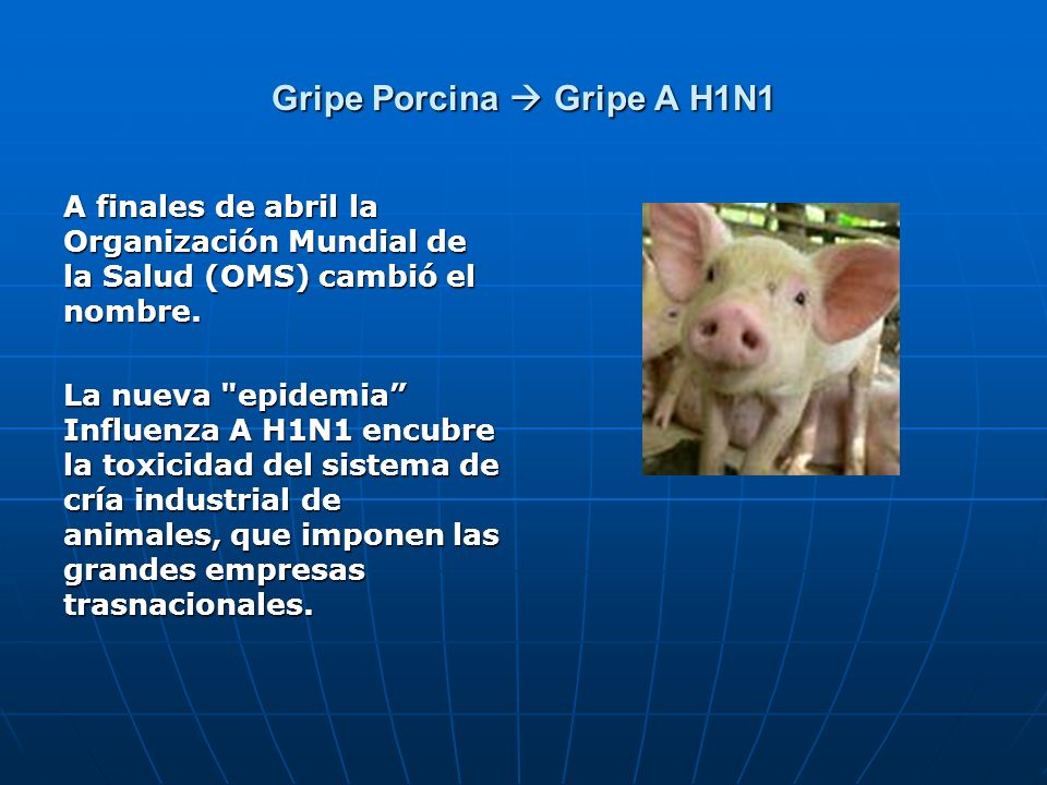 Gripe Porcina Gripe A H1N1 A finales de abril la Organización Mundial de la Salud (OMS) cambió el nombre. La nueva