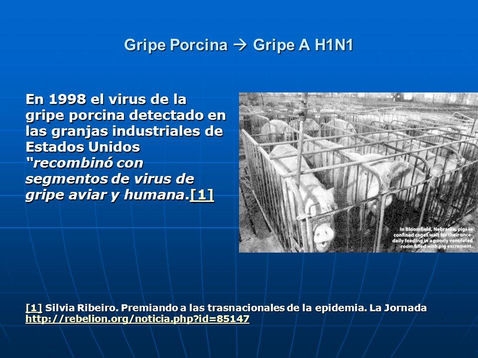 Gripe Porcina Gripe A H1N1 En 1998 el virus de la gripe porcina detectado en las granjas industriales de Estados Unidos recombinó con segmentos de vir