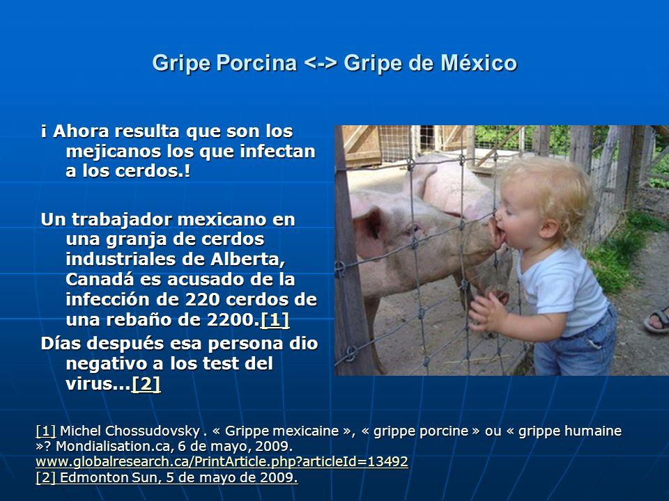 Gripe Porcina Gripe de México ¡ Ahora resulta que son los mejicanos los que infectan a los cerdos.! Un trabajador mexicano en una granja de cerdos ind