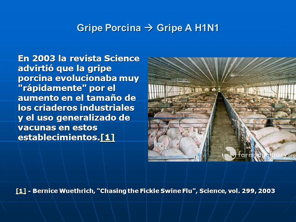 Gripe Porcina Gripe A H1N1 En 2003 la revista Science advirtió que la gripe porcina evolucionaba muy