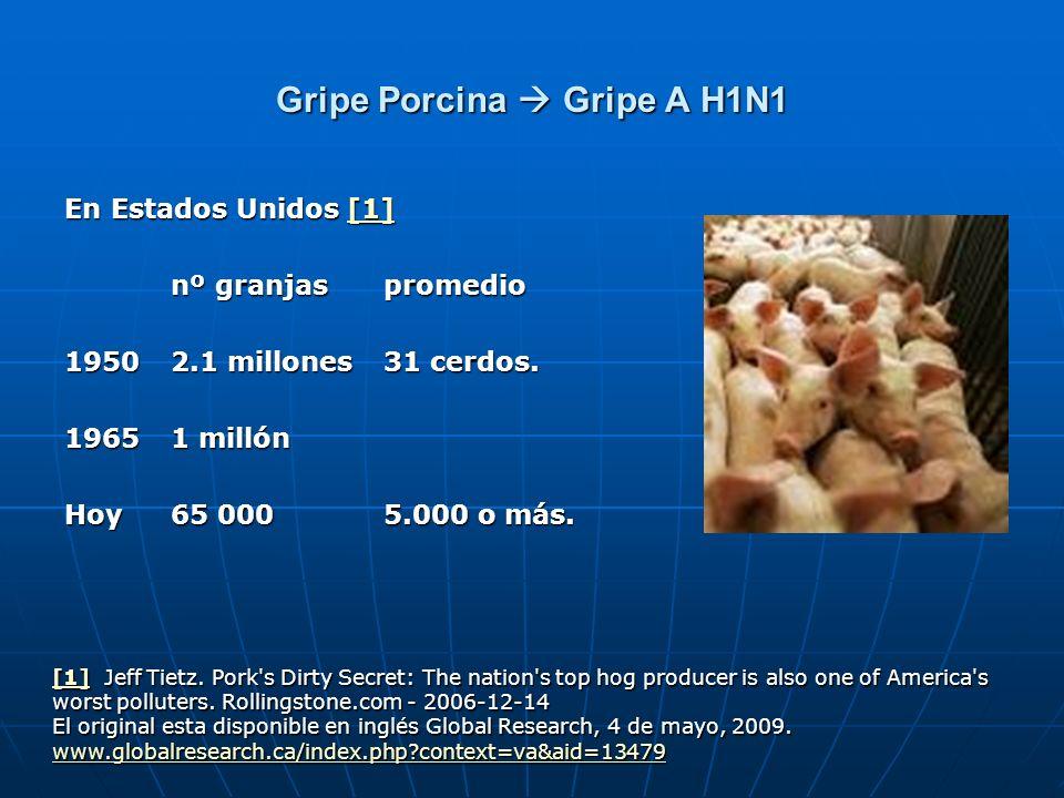 Gripe Porcina Gripe A H1N1 En Estados Unidos [1] [1] nº granjas promedio nº granjas promedio 1950 2.1 millones 31 cerdos. 19651 millón Hoy 65 000 5.00