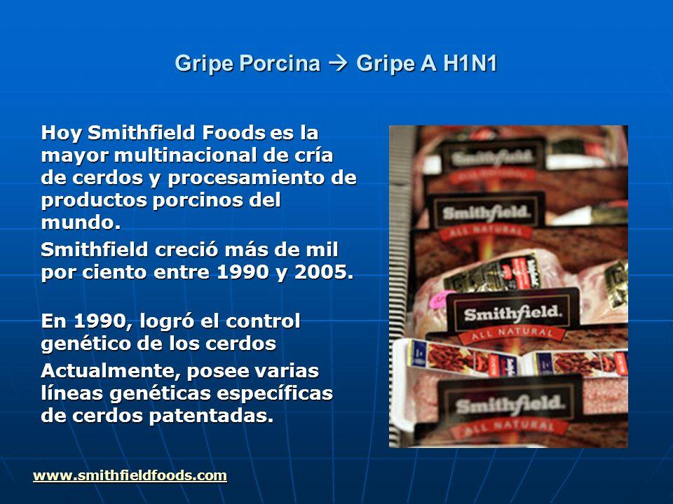 Gripe Porcina Gripe A H1N1 Smithfield Foods produce cantidades de mierda, unos 26 millones de toneladas en el año 2006.[1] [1] Se ha enfrentado con varios procesos judiciales por contaminación, prácticas antisindicales, monopolio, etc.