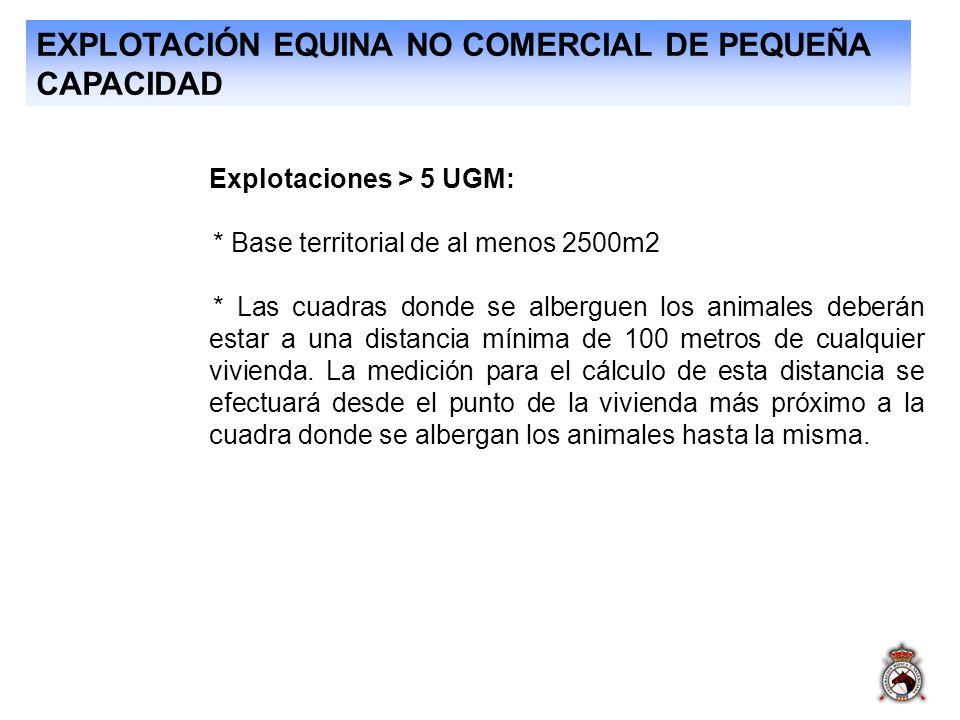 EXPLOTACIÓN EQUINA NO COMERCIAL DE PEQUEÑA CAPACIDAD Explotaciones > 5 UGM: * Base territorial de al menos 2500m2 * Las cuadras donde se alberguen los
