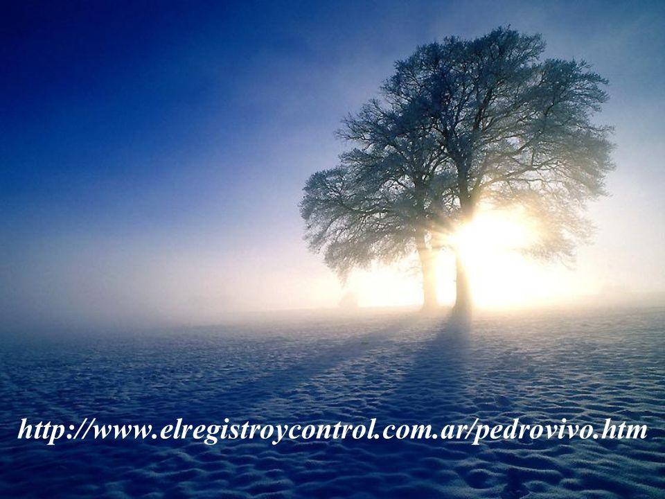 http://www.elregistroycontrol.com.ar/pedrovivo.htm