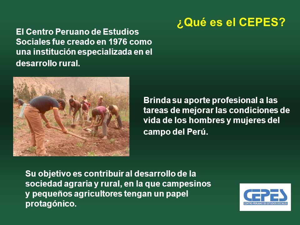El Centro Peruano de Estudios Sociales fue creado en 1976 como una institución especializada en el desarrollo rural.