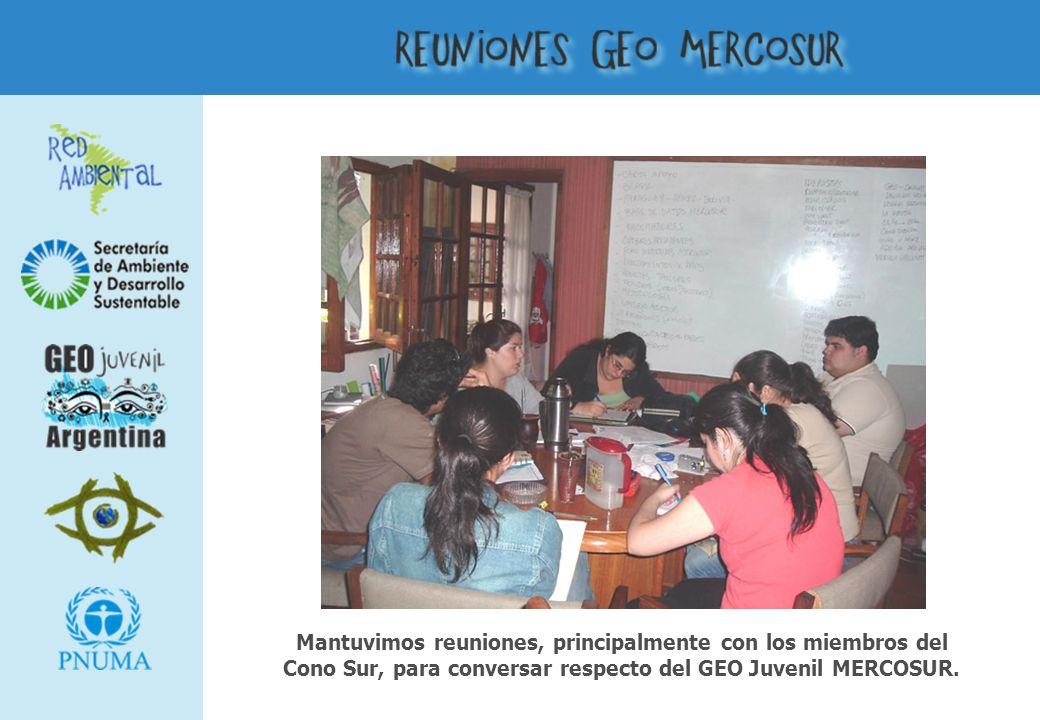 Mantuvimos reuniones, principalmente con los miembros del Cono Sur, para conversar respecto del GEO Juvenil MERCOSUR.