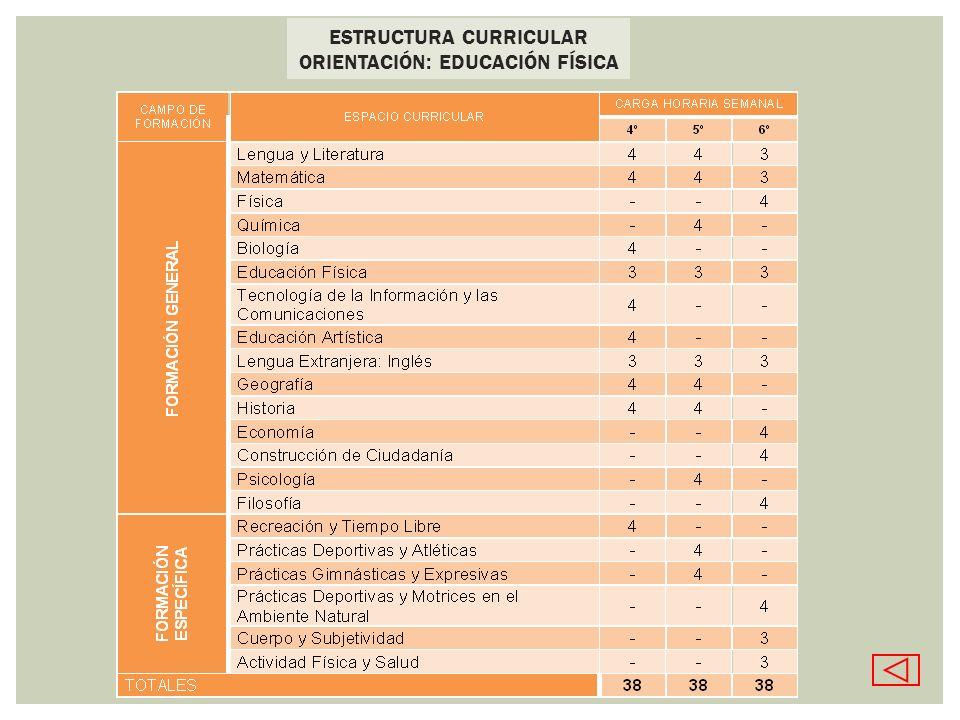ESTRUCTURA CURRICULAR ORIENTACIÓN: EDUCACIÓN FÍSICA