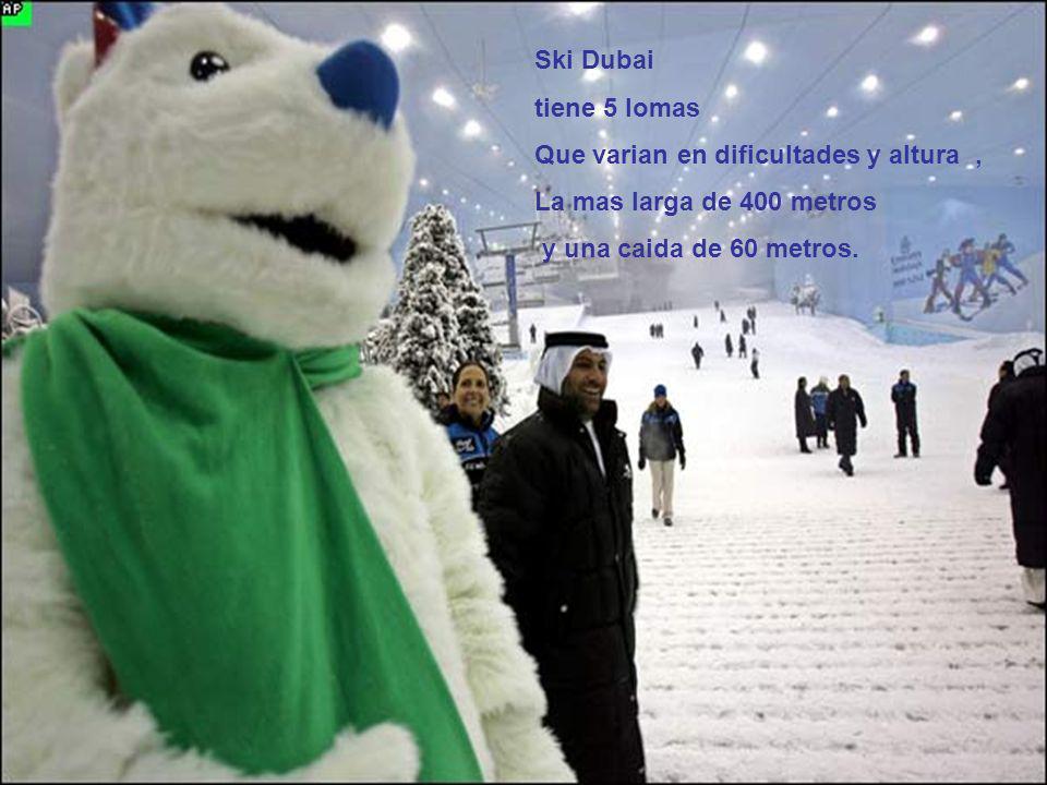 Ski Dubai tiene 5 lomas Que varian en dificultades y altura, La mas larga de 400 metros y una caida de 60 metros.