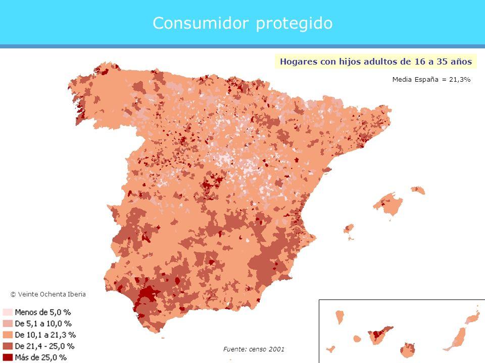 Consumidor protegido Hogares con hijos adultos de 16 a 35 años Fuente: censo 2001 Media España = 21,3% © Veinte Ochenta Iberia