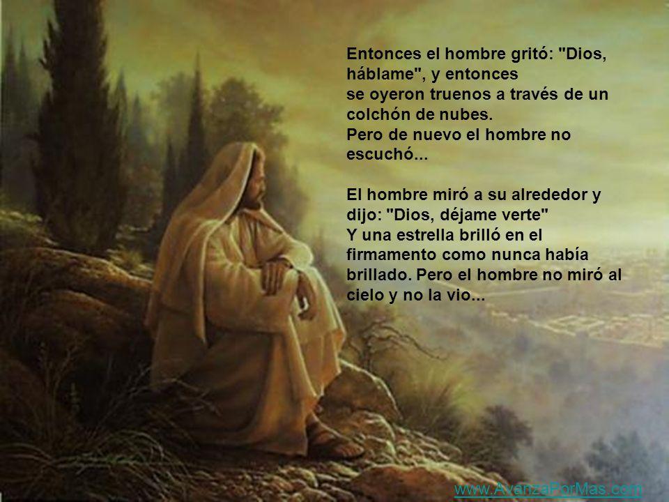 UN HOMBRE SUSURRO: DIOS HABLAME Y entonces cantó un pajarito. Pero el hombre no escucho www.AvanzaPorMas.com