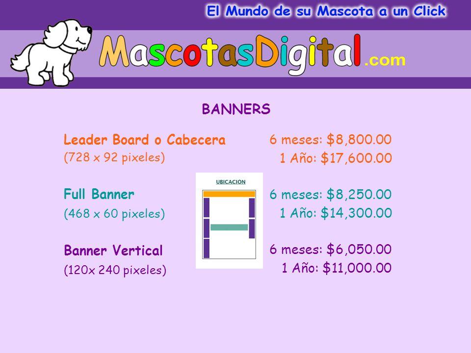 6 meses: $8,800.00 1 Año: $17,600.00 6 meses: $8,250.00 1 Año: $14,300.00 6 meses: $6,050.00 1 Año: $11,000.00 Leader Board o Cabecera (728 x 92 pixeles) Full Banner (468 x 60 pixeles) Banner Vertical (120x 240 pixeles) BANNERS