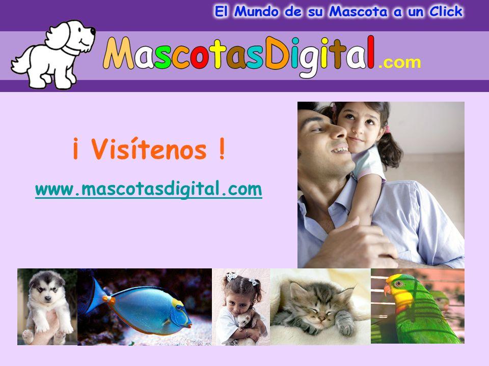 ¡ Visítenos ! www.mascotasdigital.com