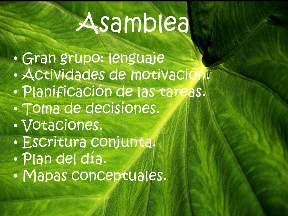 Asamblea Gran grupo: lenguaje Actividades de motivación.