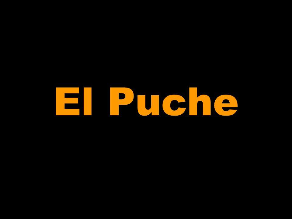 El Puche