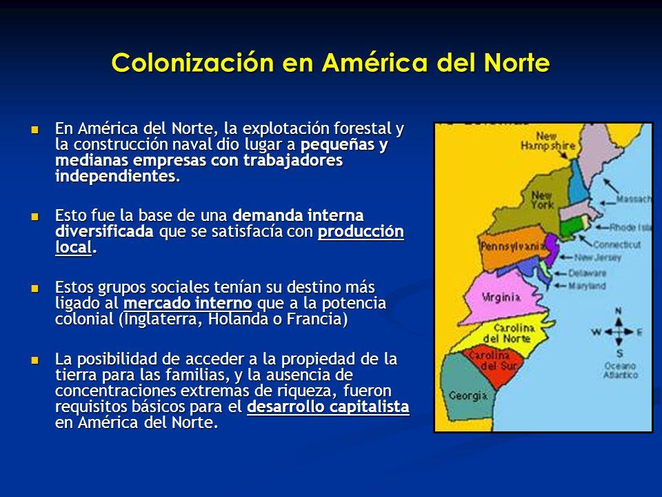 Colonización en América del Norte En América del Norte, la explotación forestal y la construcción naval dio lugar a pequeñas y medianas empresas con trabajadores independientes.
