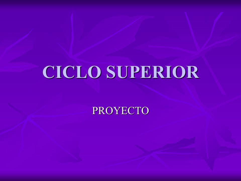 CICLO SUPERIOR PROYECTO