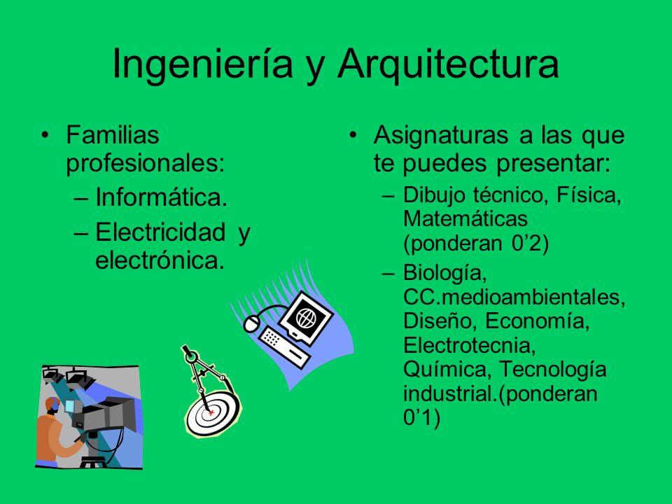 Ingeniería y Arquitectura Familias profesionales: –Informática. –Electricidad y electrónica. Asignaturas a las que te puedes presentar: –Dibujo técnic