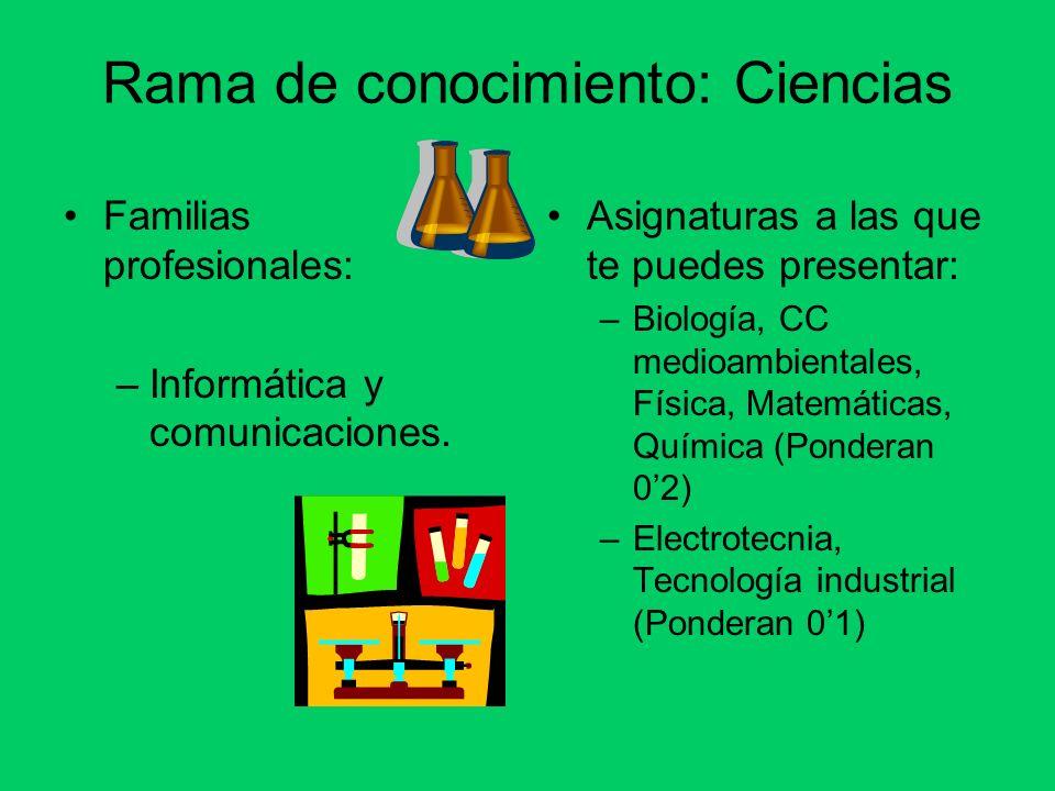 Rama de conocimiento: Ciencias Familias profesionales: –Informática y comunicaciones.