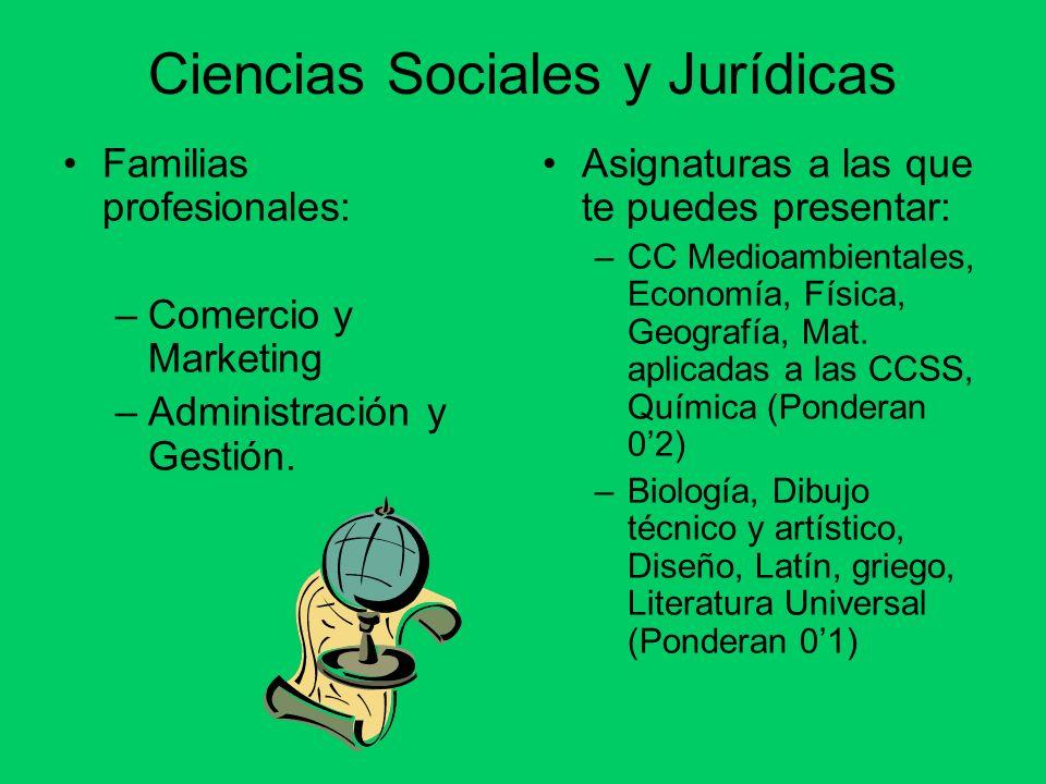 Ciencias Sociales y Jurídicas Familias profesionales: –Comercio y Marketing –Administración y Gestión. Asignaturas a las que te puedes presentar: –CC