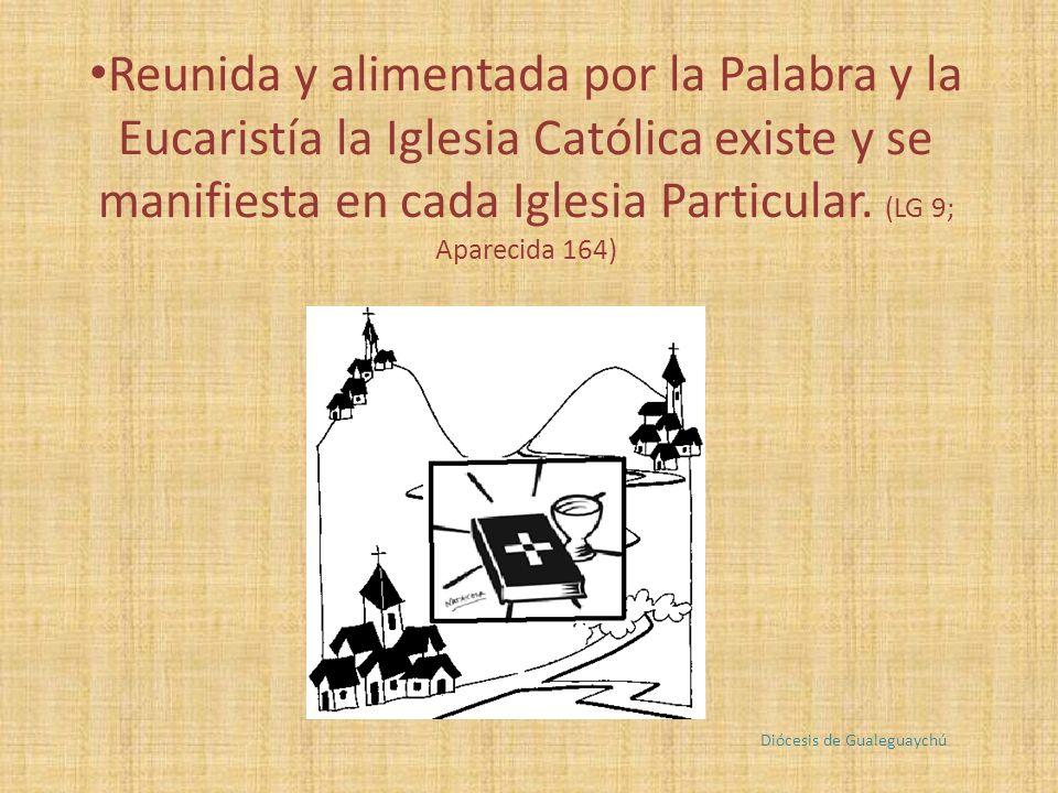 Reunida y alimentada por la Palabra y la Eucaristía la Iglesia Católica existe y se manifiesta en cada Iglesia Particular.