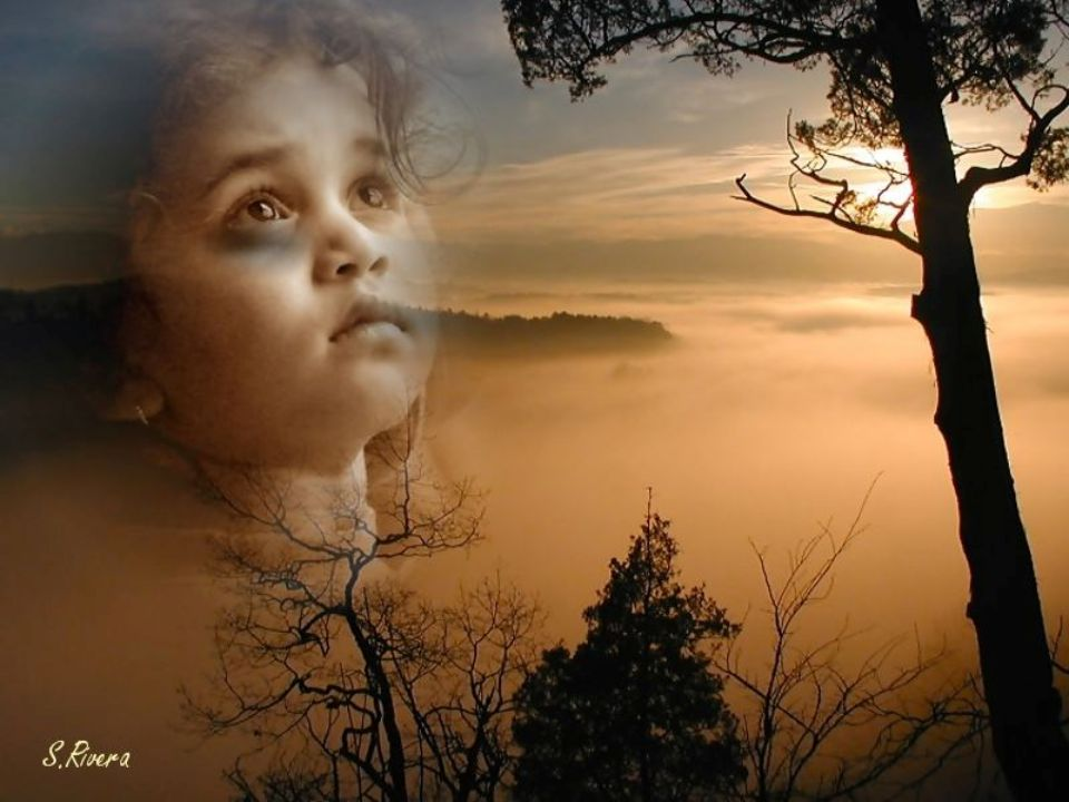 Please don t let them hurt your children, Por favor no permitas que maltraten a sus niños, won t you keep us safe and warm.