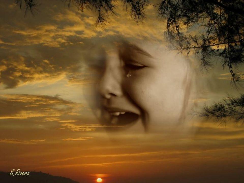 Dear Mr. Jesus, please tell me what to do, Querido Señor Jesús, por favor dígame que hacer,
