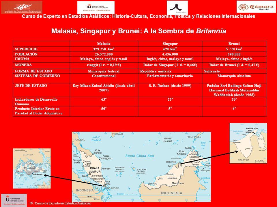 R 3. Curso de Experto en Estudios Asiáticos. Malasia, Singapur y Brunei: A la Sombra de Britannia MalasiaSingapurBrunei SUPERFICIE329.750 km 2 620 km