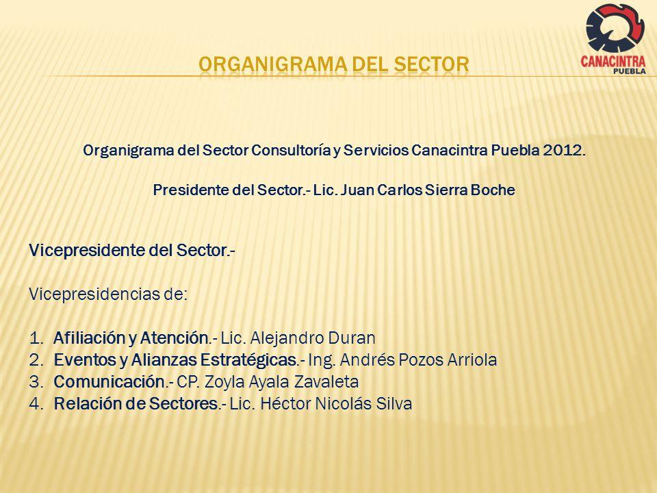 Organigrama del Sector Consultoría y Servicios Canacintra Puebla 2012. Presidente del Sector.- Lic. Juan Carlos Sierra Boche Vicepresidente del Sector