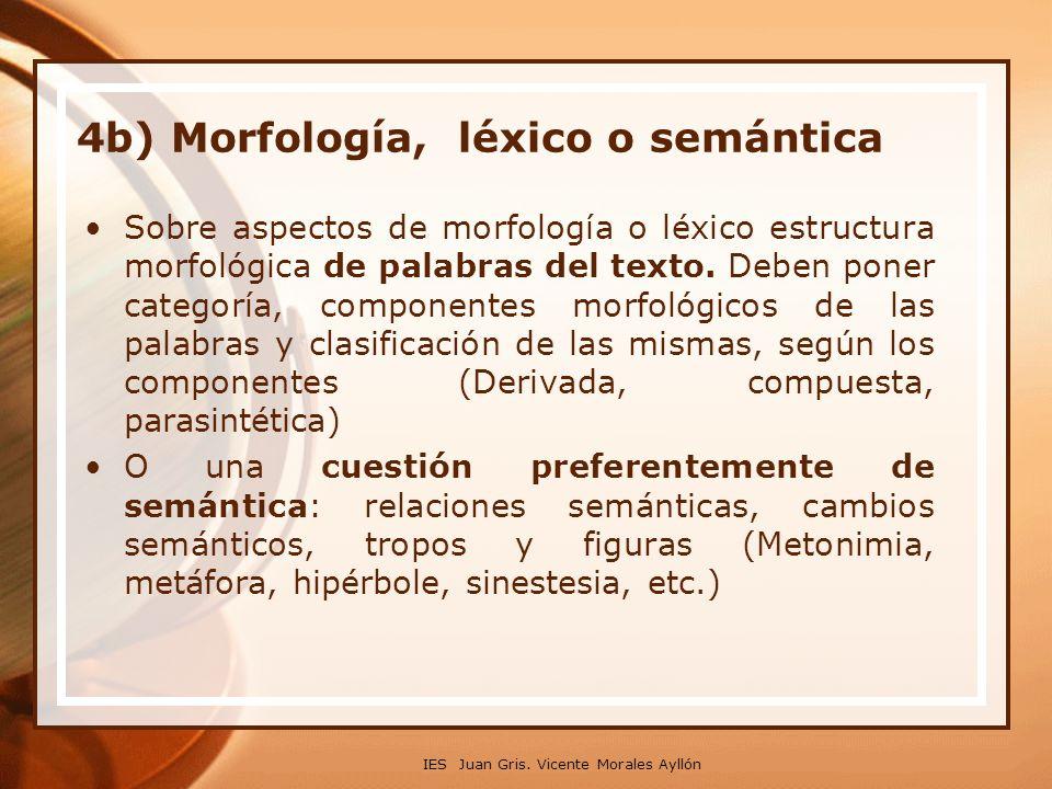 4b) Morfología, léxico o semántica Sobre aspectos de morfología o léxico estructura morfológica de palabras del texto.