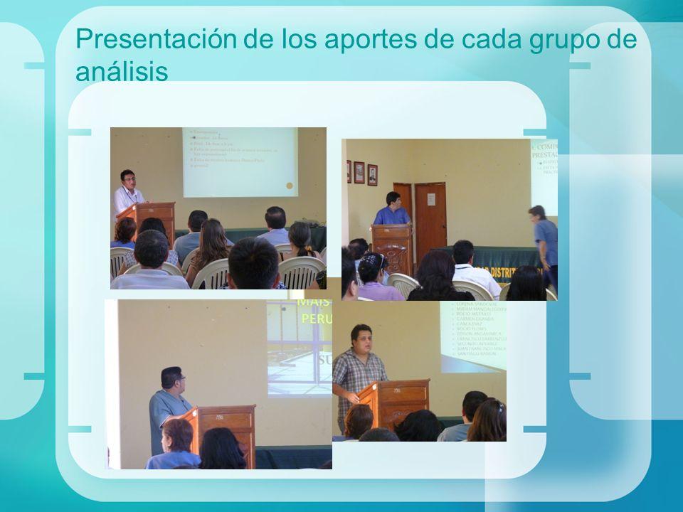 Presentación de los aportes de cada grupo de análisis
