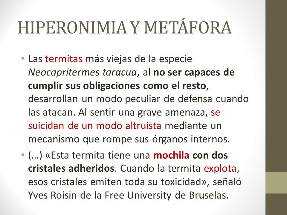 HIPERONIMIA Y METÁFORA Las termitas más viejas de la especie Neocapritermes taracua, al no ser capaces de cumplir sus obligaciones como el resto, desa