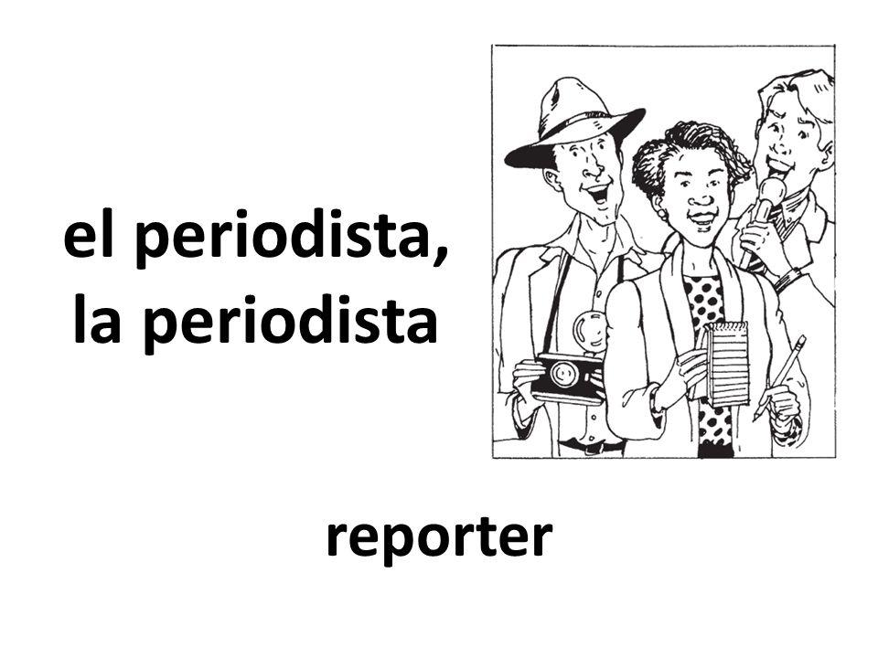 el periodista, la periodista reporter
