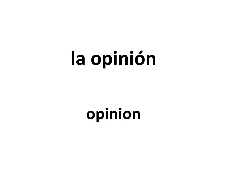 la opinión opinion
