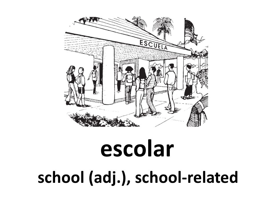 escolar school (adj.), school-related
