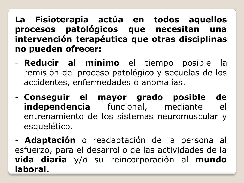 La Fisioterapia actúa en todos aquellos procesos patológicos que necesitan una intervención terapéutica que otras disciplinas no pueden ofrecer: -Redu